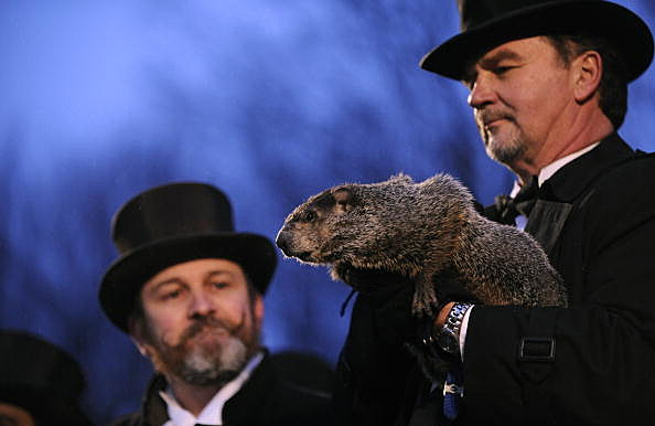 Punxsutawney Phil Makes An Appearance On Groundhog Day