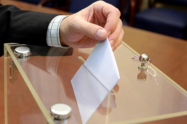 Elections, Vladimir Cetinski